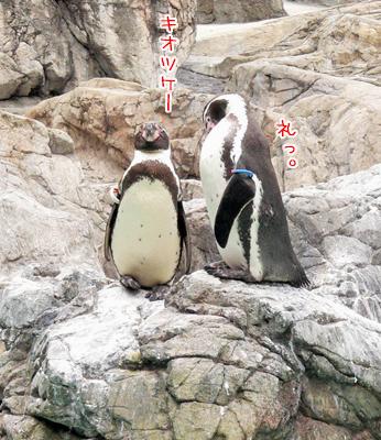 横浜旅行30.jpg