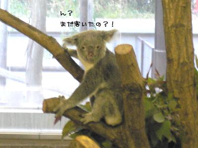 横浜旅行5.jpg