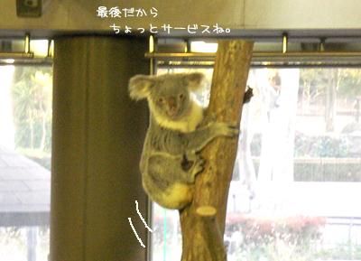 横浜旅行6.jpg