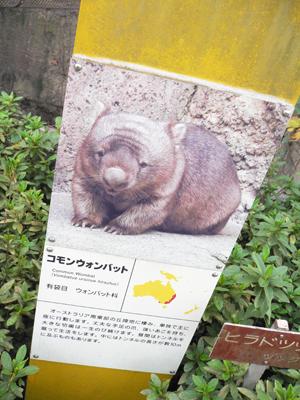 横浜旅行9.jpg